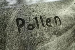 Wort Pollen geschrieben auf einem Fenster