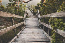 Eine Holztreppe in der Natur