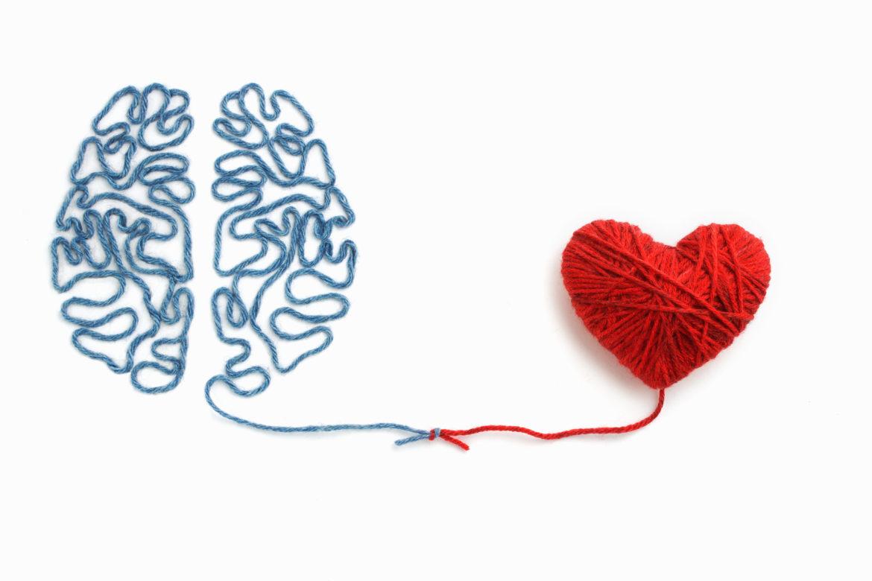 Wolle Faden Herz Gehirn Knoten