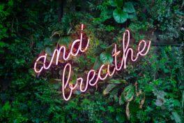 Pflanzen Spruch Atmung Leuchtreklame
