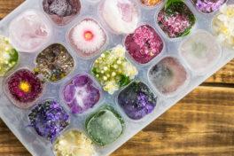 Behälter mit Eiswürfeln und gefrorenen Blüten auf einem Holztisch.