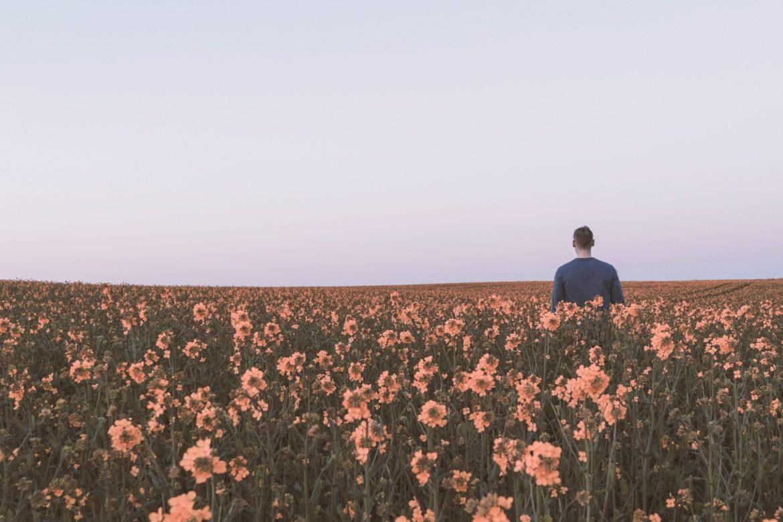 Mann Blumenwiese
