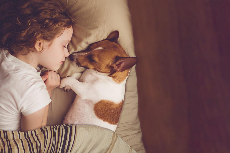 Kind schläft mit Hund