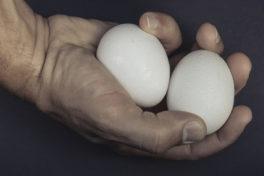 zwei Eier in der Hand