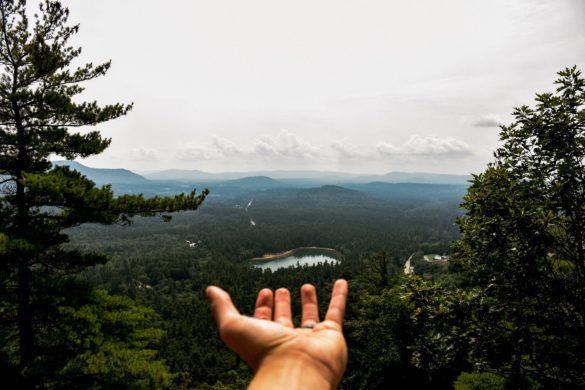 EIne Hnad mit der Handfläche nach oben vor einer Wald, Berge Landschaft.