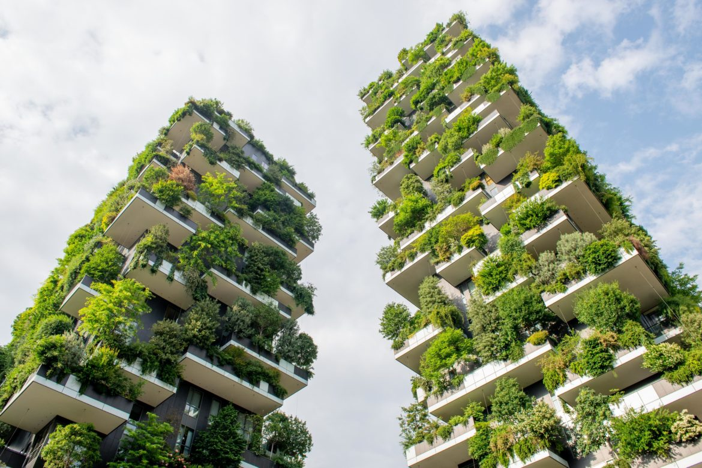 Pflanzen an Häusern