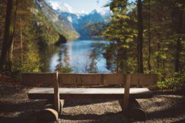 Eine Parkbank aus Holz in einem Wald mit grünen Bäumen vor einem See mit Bergpanorama.
