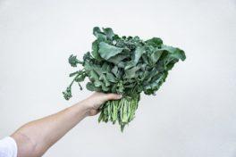 Gemüse Blätter