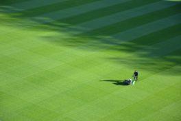 Mann mäht Rasen