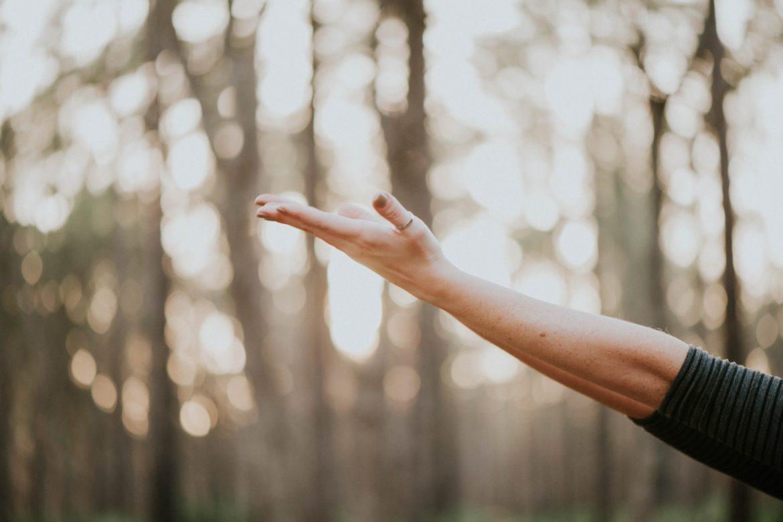 Hand mit Wald