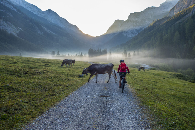 Mensch und Tiere bei Bergen
