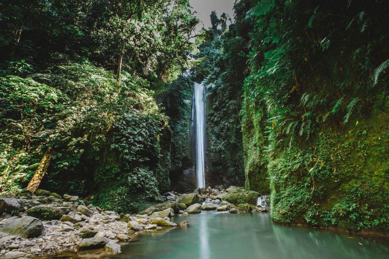 Wasserfall in Wald