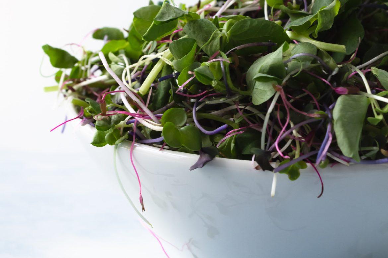 Schüssel mit Salat
