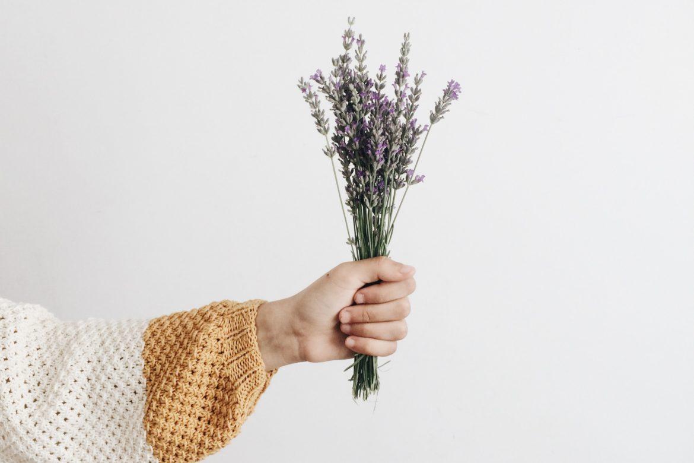 Hand mit Pflanzen